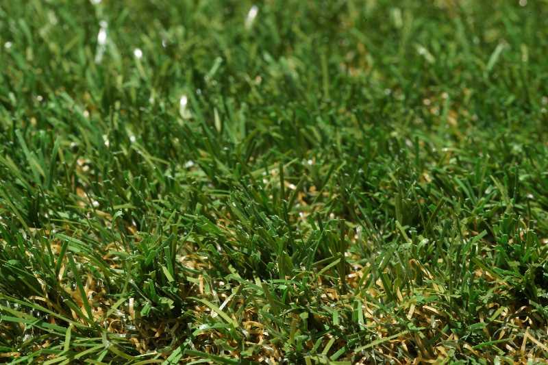 Tru Lawn Premium